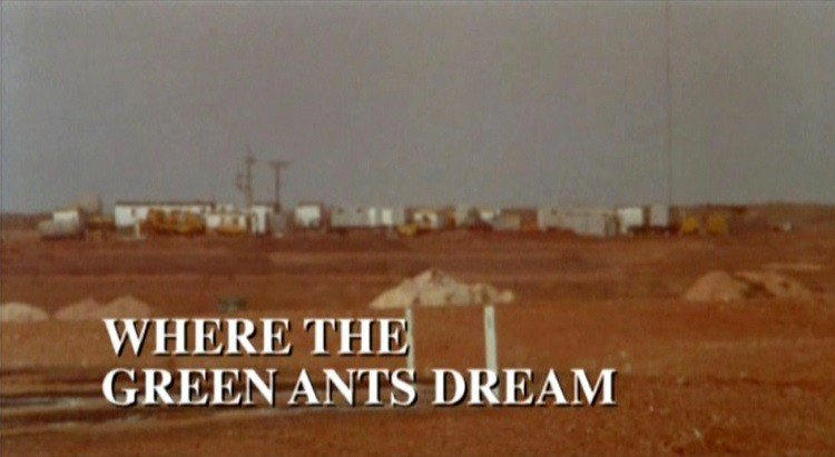 where the green ants dream cover