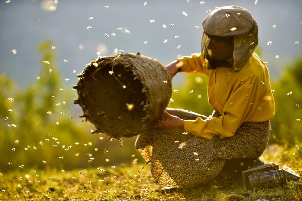 Hatidze Muratova with beehive in Honeyland
