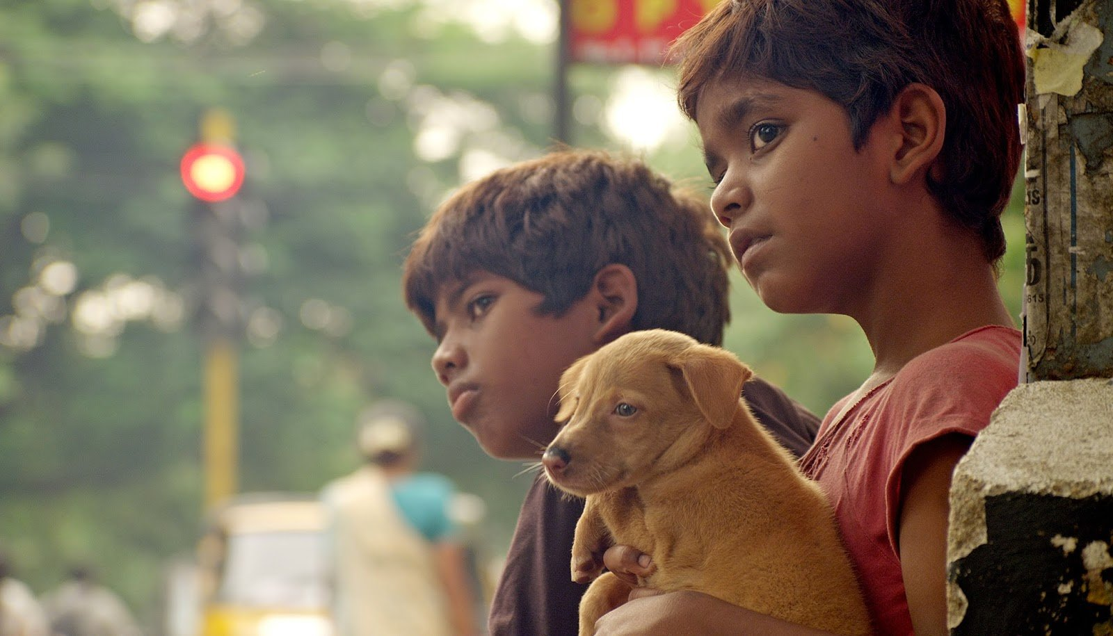 Best Regional Indian Movies of the Decade (the 2010s) - Kaaka Muttai