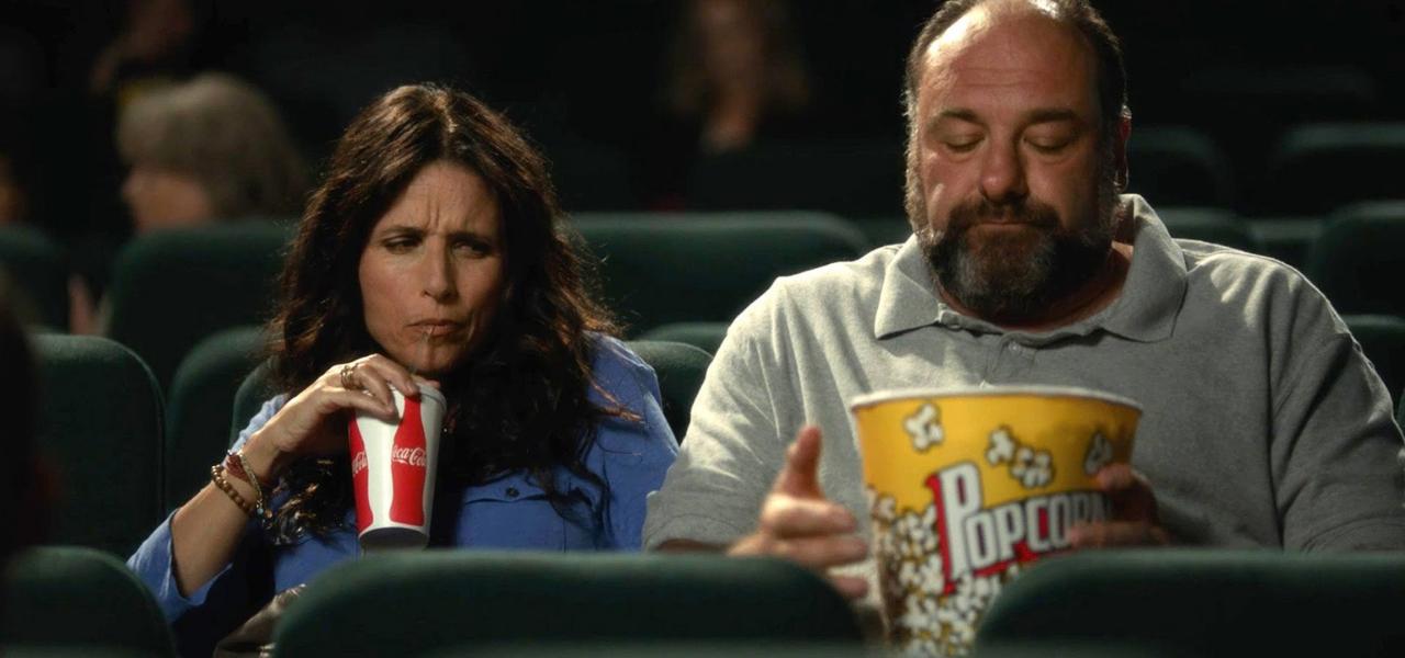 Romantic Comedy Movies - Enough Said (2013)