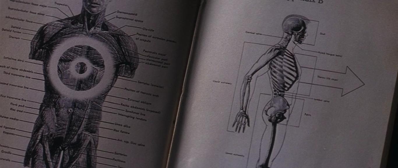 Donnie Darko 2001 3
